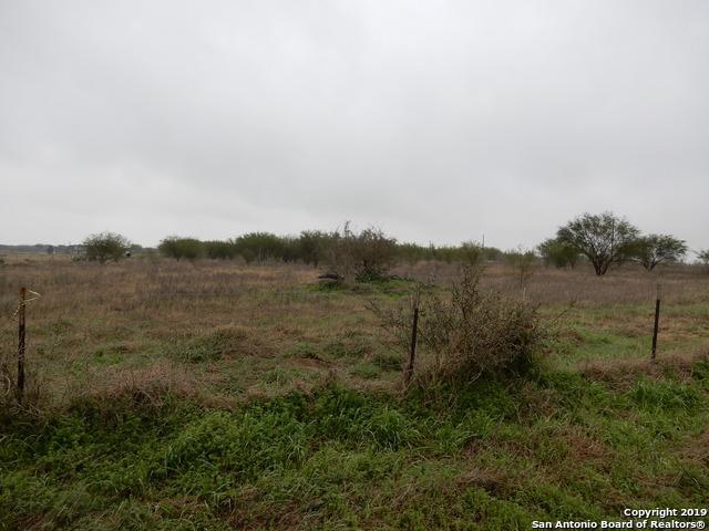 3620 County Road 405, Floresville, TX 78114 (MLS #1362296) :: NewHomePrograms.com LLC