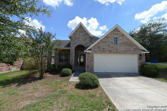 3410 Highline Trail, San Antonio, TX 78261 (MLS #1362479) :: Alexis Weigand Real Estate Group