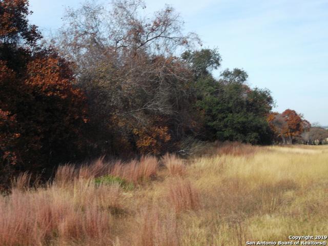 999 I-37 S, Elmendorf, TX 78112 (MLS #1362639) :: ForSaleSanAntonioHomes.com