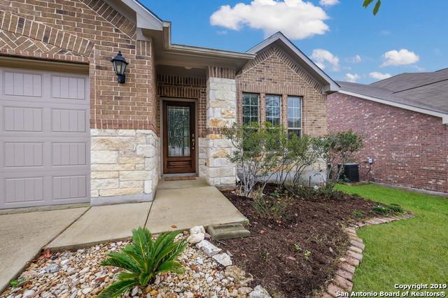 3626 Texas Sotol, San Antonio, TX 78261 (MLS #1363084) :: Vivid Realty