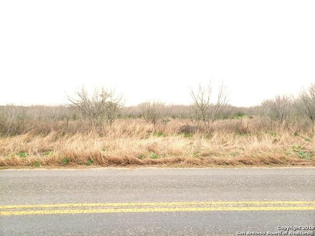 4474 S Flores Rd, Elmendorf, TX 78112 (MLS #1363112) :: Alexis Weigand Real Estate Group