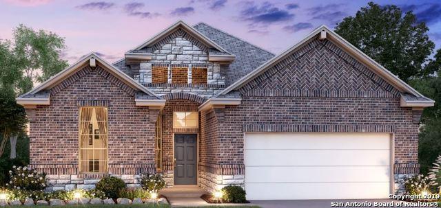 2930 NE Blenheim Park, Bulverde, TX 78163 (MLS #1363304) :: BHGRE HomeCity