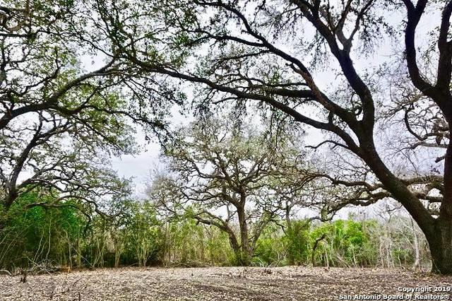 000 E Oak, Goliad, TX 77963 (MLS #1363431) :: ForSaleSanAntonioHomes.com