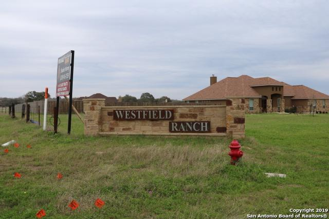 125 Westfield Ranch, La Vernia, TX 78121 (MLS #1363573) :: River City Group