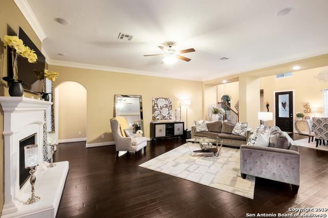 24210 Viento Leaf, San Antonio, TX 78260 (MLS #1363689) :: Alexis Weigand Real Estate Group