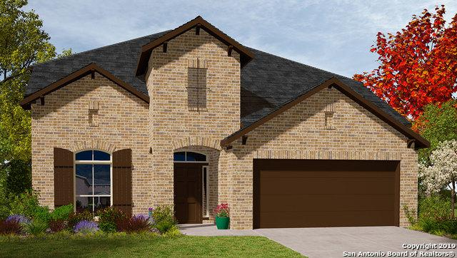 358 Lost Maples, New Braunfels, TX 78130 (MLS #1363789) :: Exquisite Properties, LLC