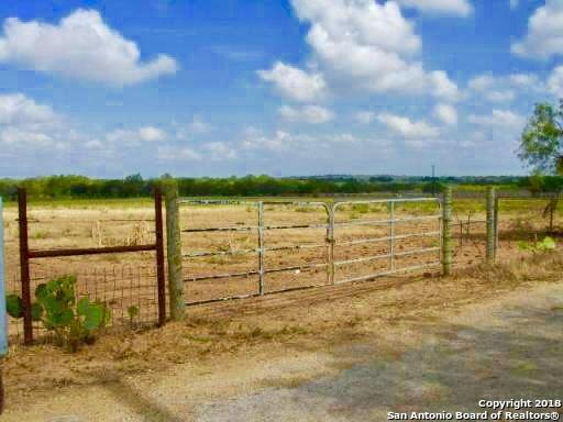 10790 W Fm 2790, Somerset, TX 78069 (MLS #1364087) :: Alexis Weigand Real Estate Group