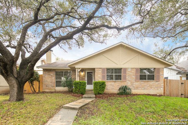 12127 Magnolia Blossom, San Antonio, TX 78247 (MLS #1364108) :: Alexis Weigand Real Estate Group