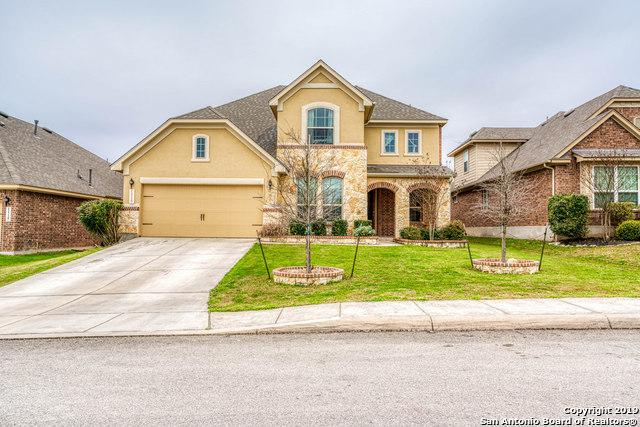 11726 Caitlin Ash, San Antonio, TX 78253 (MLS #1364228) :: The Castillo Group