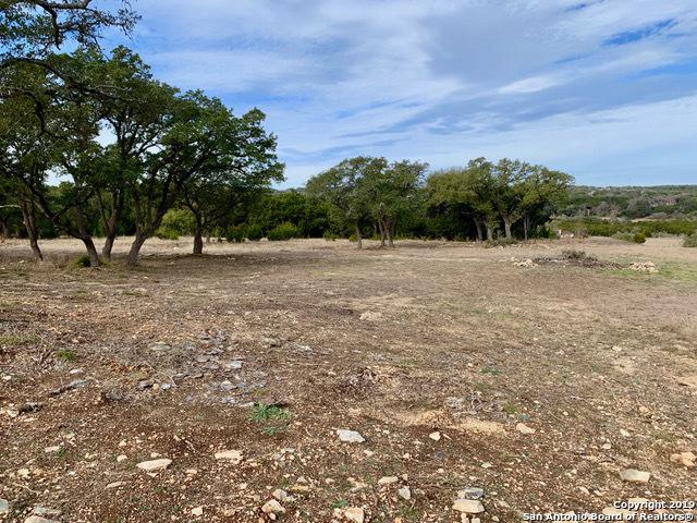 1023 Las Brisas Dr, Canyon Lake, TX 78133 (MLS #1364267) :: Magnolia Realty