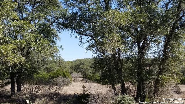 2319 Cascada Pkwy, Spring Branch, TX 78070 (MLS #1364296) :: Magnolia Realty