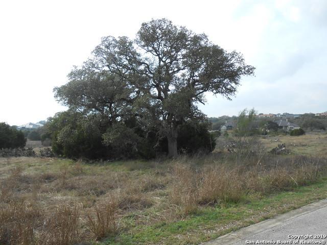 5721 Palisades View, New Braunfels, TX 78132 (MLS #1364297) :: Neal & Neal Team
