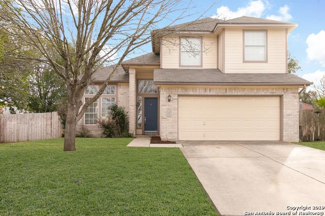 3823 Cove Meadow Dr, San Antonio, TX 78247 (MLS #1364613) :: Alexis Weigand Real Estate Group