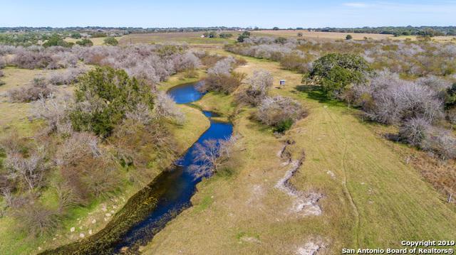 988 Metz Rd, Goliad, TX 77963 (MLS #1364641) :: ForSaleSanAntonioHomes.com