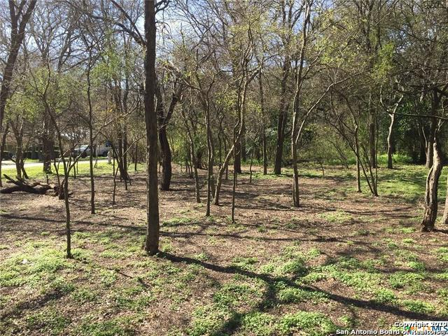 LOT 112 Twin Oak, Seguin, TX 78155 (MLS #1364910) :: Alexis Weigand Real Estate Group
