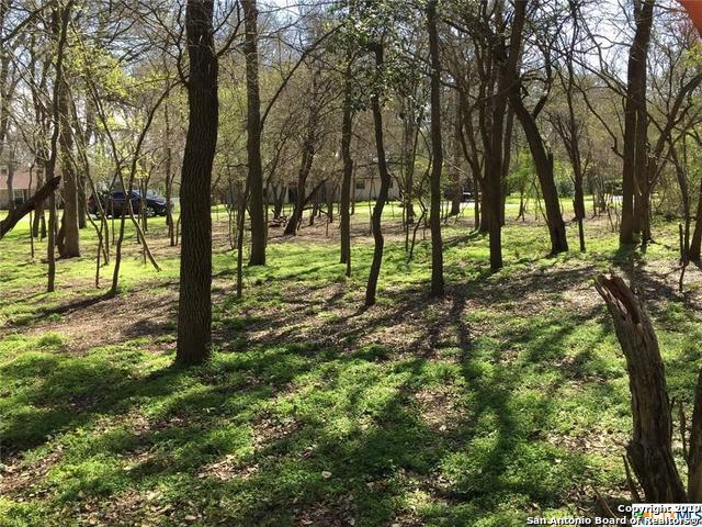 LOT 113 Twin Oak, Seguin, TX 78155 (MLS #1364912) :: Alexis Weigand Real Estate Group