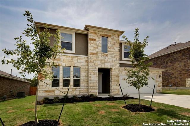 309 Sky Springs Pass, San Marcos, TX 78666 (MLS #1365001) :: Erin Caraway Group