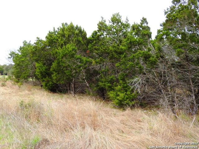 LOT 2 8th Street, Lakehills, TX 78063 (MLS #1365163) :: Alexis Weigand Real Estate Group