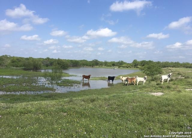 00000 W Highway 97, Fowlerton, TX 78021 (MLS #1365167) :: Santos and Sandberg