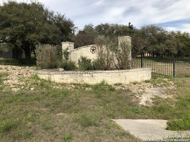 LOT 20 CR 273 County Road 273, Mico, TX 78056 (MLS #1365252) :: ForSaleSanAntonioHomes.com