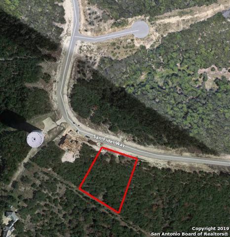 0008 San Fidel Way, San Antonio, TX 78255 (MLS #1365449) :: Alexis Weigand Real Estate Group