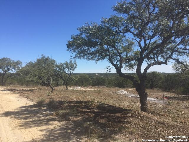 2580 Golf Dr, Spring Branch, TX 78070 (MLS #1365523) :: The Mullen Group | RE/MAX Access