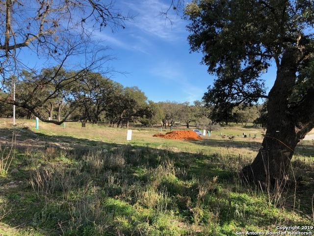 104 Creede St, Boerne, TX 78006 (MLS #1365857) :: River City Group