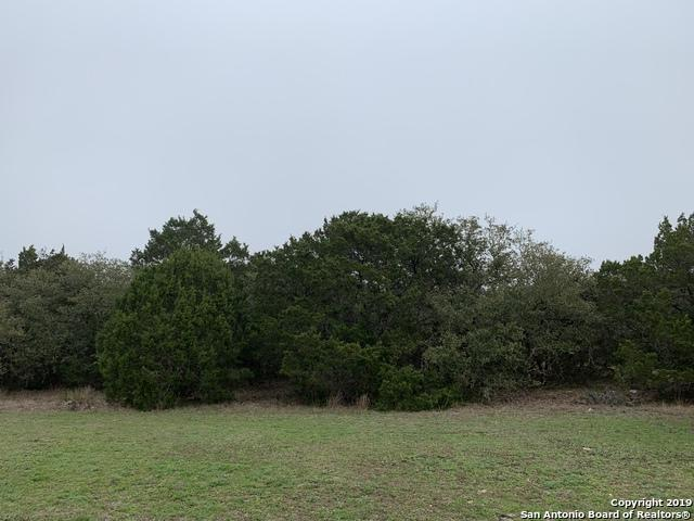 1976 Fm 3424, Canyon Lake, TX 78133 (MLS #1365873) :: BHGRE HomeCity