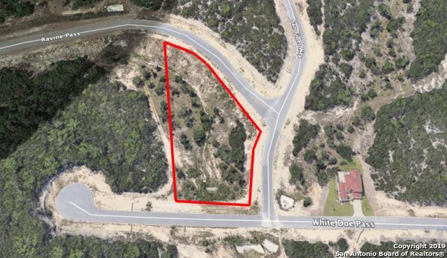0001 Ravine Pass, San Antonio, TX 78255 (MLS #1366071) :: Alexis Weigand Real Estate Group