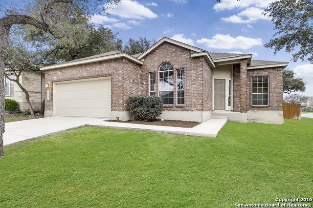 10607 Cosmos Canyon, Helotes, TX 78023 (MLS #1366139) :: The Mullen Group | RE/MAX Access