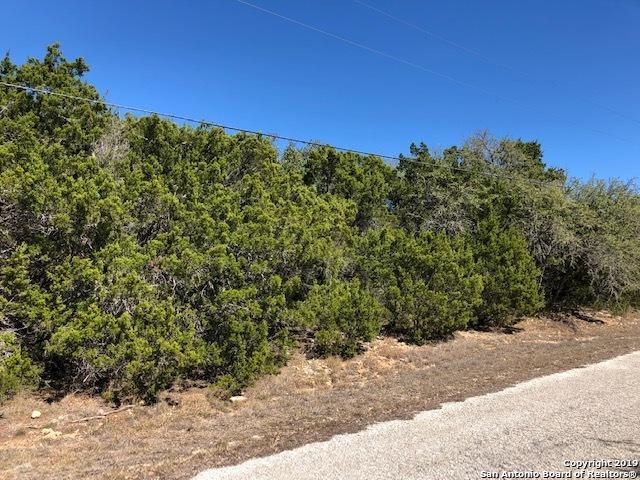 306 Lakewood Ct, Canyon Lake, TX 78133 (MLS #1366223) :: Magnolia Realty
