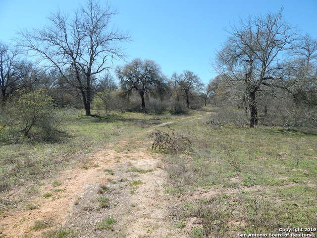 370 Webb Road, Somerset, TX 78069 (MLS #1366543) :: Exquisite Properties, LLC