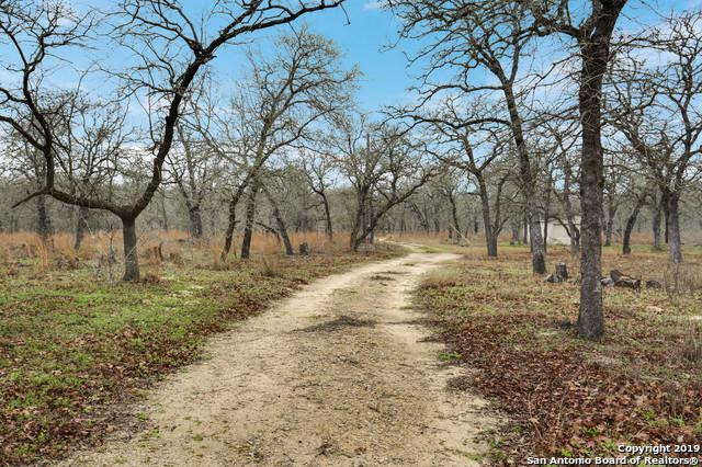 662 County Road 319, La Vernia, TX 78121 (MLS #1367017) :: Exquisite Properties, LLC