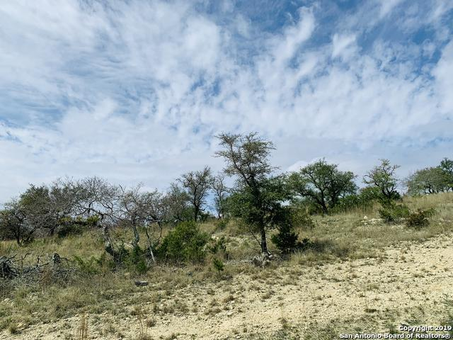 LOT 17 High Point Ranch, Boerne, TX 78006 (MLS #1367259) :: Magnolia Realty