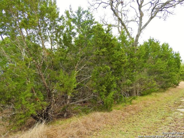 LOT 77 Tracie Trail, Lakehills, TX 78063 (MLS #1367601) :: Reyes Signature Properties