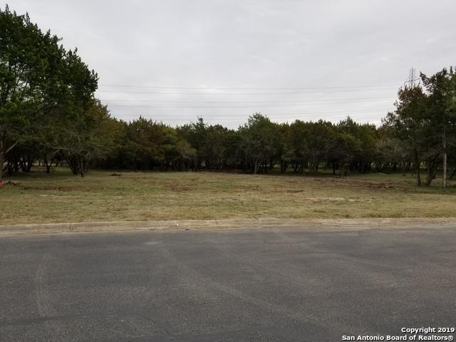 9946 Trophy Oaks Dr, Garden Ridge, TX 78266 (MLS #1367699) :: The Mullen Group | RE/MAX Access