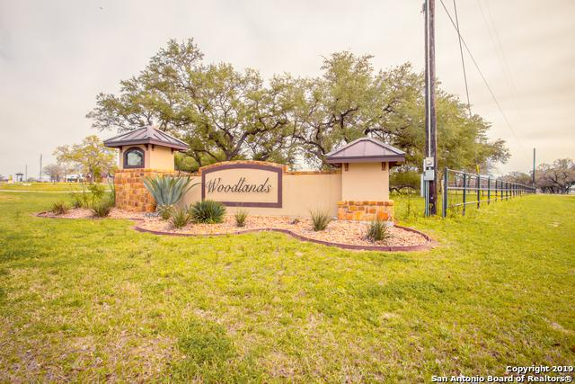 152 Woodlands Dr, La Vernia, TX 78121 (MLS #1367886) :: The Mullen Group | RE/MAX Access