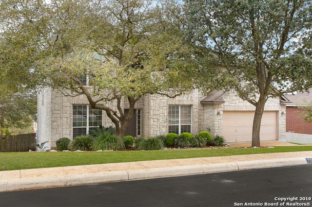20411 Zeta View, San Antonio, TX 78258 (MLS #1367952) :: Alexis Weigand Real Estate Group