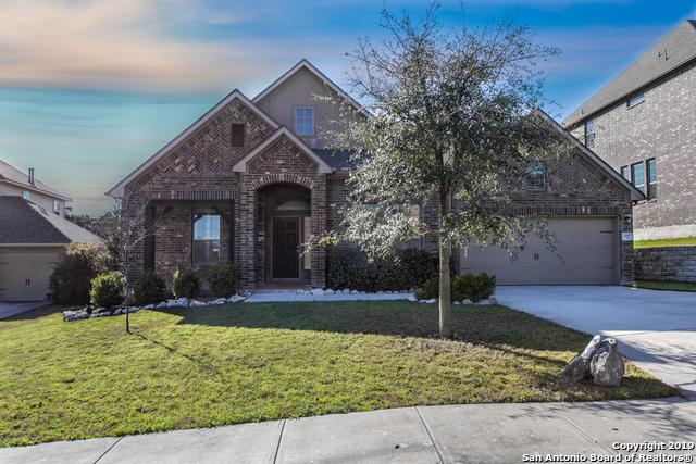 25907 Avellino Bluff, San Antonio, TX 78261 (MLS #1368026) :: Exquisite Properties, LLC