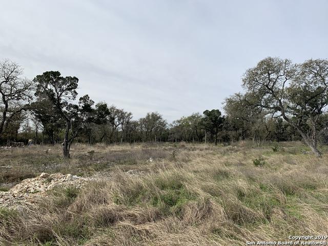 5717 Dry Comal Dr, New Braunfels, TX 78132 (MLS #1368151) :: Magnolia Realty