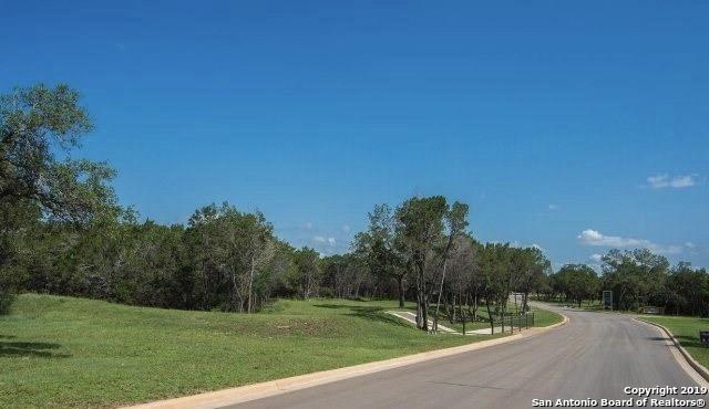 2406 Geneseo Oaks, New Braunfels, TX 78132 (MLS #1368276) :: Alexis Weigand Real Estate Group