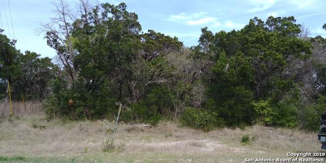 342 County Road 2744, Mico, TX 78056 (MLS #1368560) :: Berkshire Hathaway HomeServices Don Johnson, REALTORS®