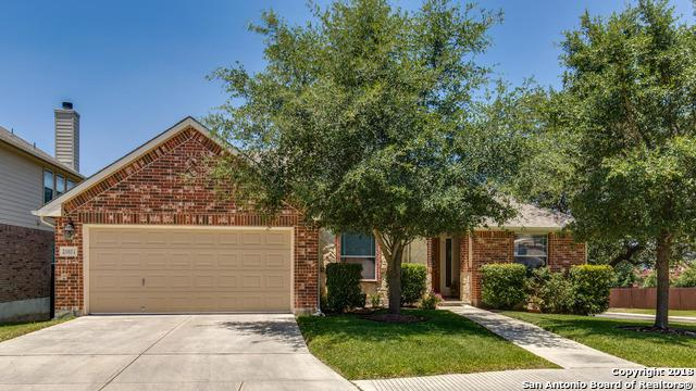 25851 Beautyberry, San Antonio, TX 78261 (MLS #1368570) :: Tom White Group
