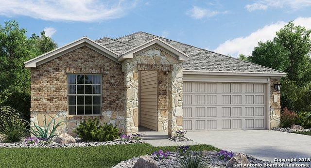 10667 Penelope Way, Converse, TX 78109 (MLS #1368706) :: Exquisite Properties, LLC