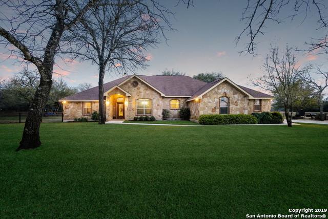 313 Rose Garden Dr, La Vernia, TX 78121 (MLS #1368772) :: Alexis Weigand Real Estate Group