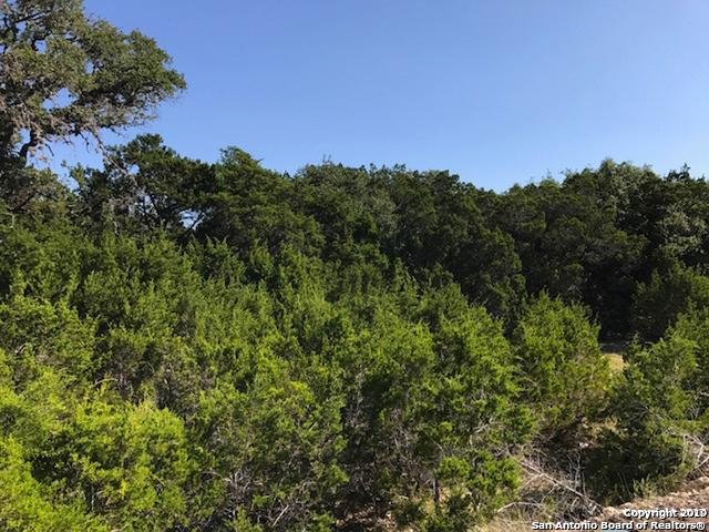 84 Cabin Spgs, Boerne, TX 78006 (MLS #1369178) :: Exquisite Properties, LLC
