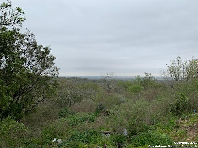 18602 County Road 5740, Castroville, TX 78009 (MLS #1369464) :: NewHomePrograms.com LLC