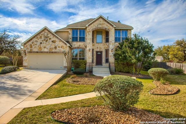 115 Roan Trace, San Antonio, TX 78258 (MLS #1369575) :: Alexis Weigand Real Estate Group