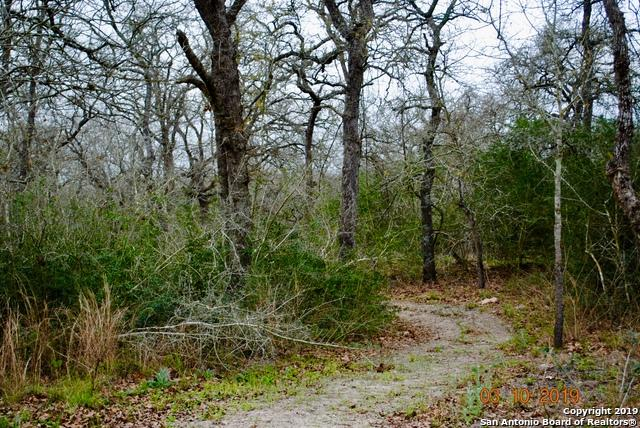 474 Pr 1131, Nixon, TX 78140 (MLS #1369652) :: Exquisite Properties, LLC