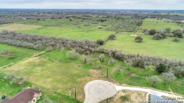 129 Colibro Creek Dr, La Vernia, TX 78121 (MLS #1369801) :: Alexis Weigand Real Estate Group